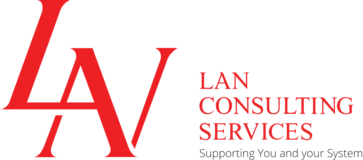 LAN Consulting Services